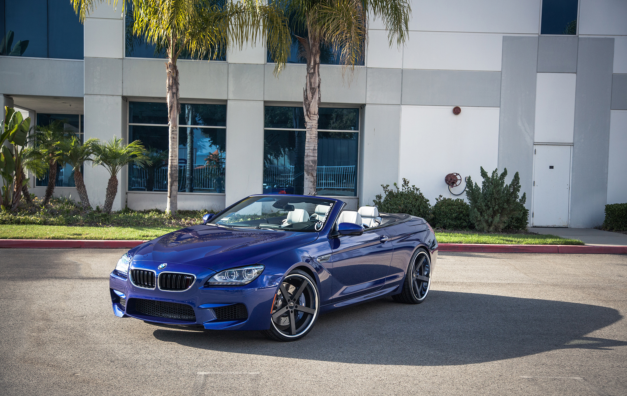Giovanna Mecca Black On BMW M6