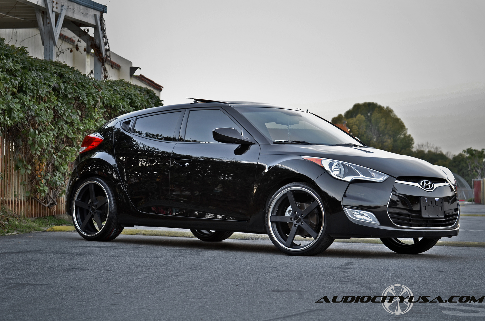 Giovanna Mecca Black on Hyundai Veloster